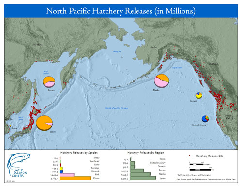 Salmon Hatcheries of the North Pacific